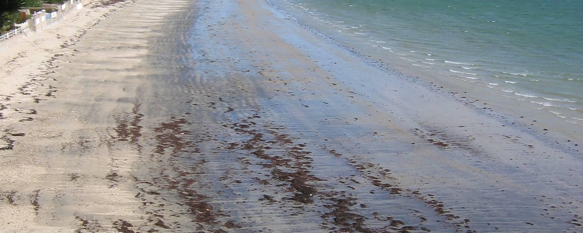 Le Cap Coz vu du sentier côtier